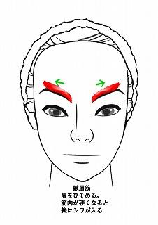 皺眉筋-1